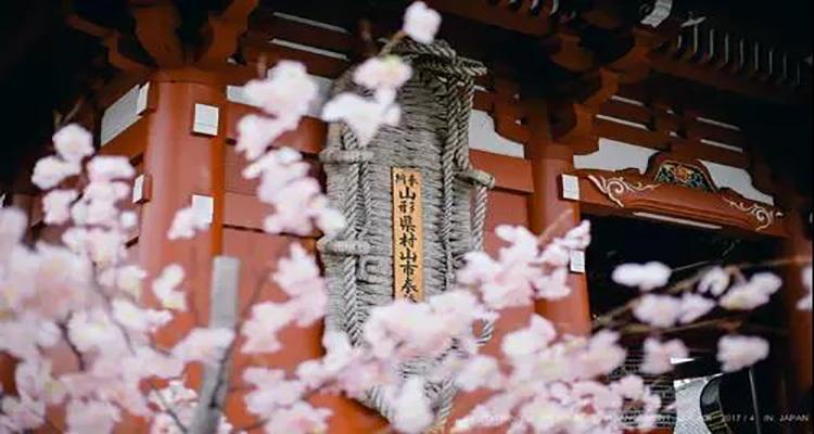 日本留学 揭底专门学校